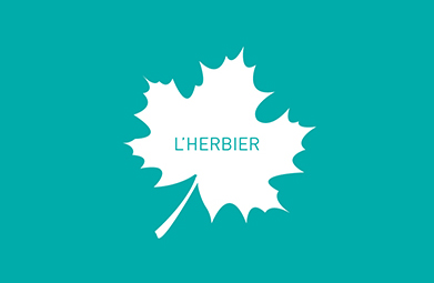 L'Herbier #15 – CERTIFICATION ISO 20121
